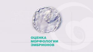 Оценка морфологии эмбрионов