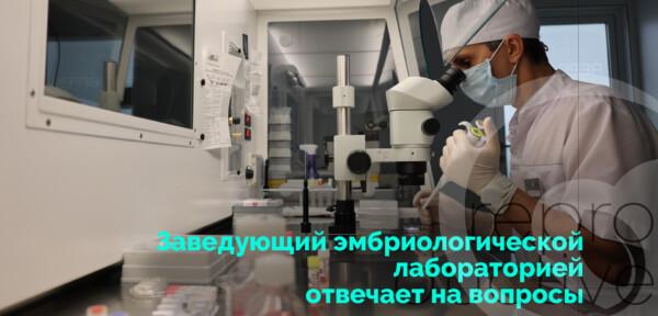 Заведующий эмбриологической лабораторией отвечает на вопросы