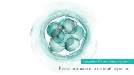Криопротокол или свежий перенос
