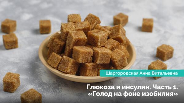 Глюкоза і інсулін. Частина 1: «Голод на тлі достатку»